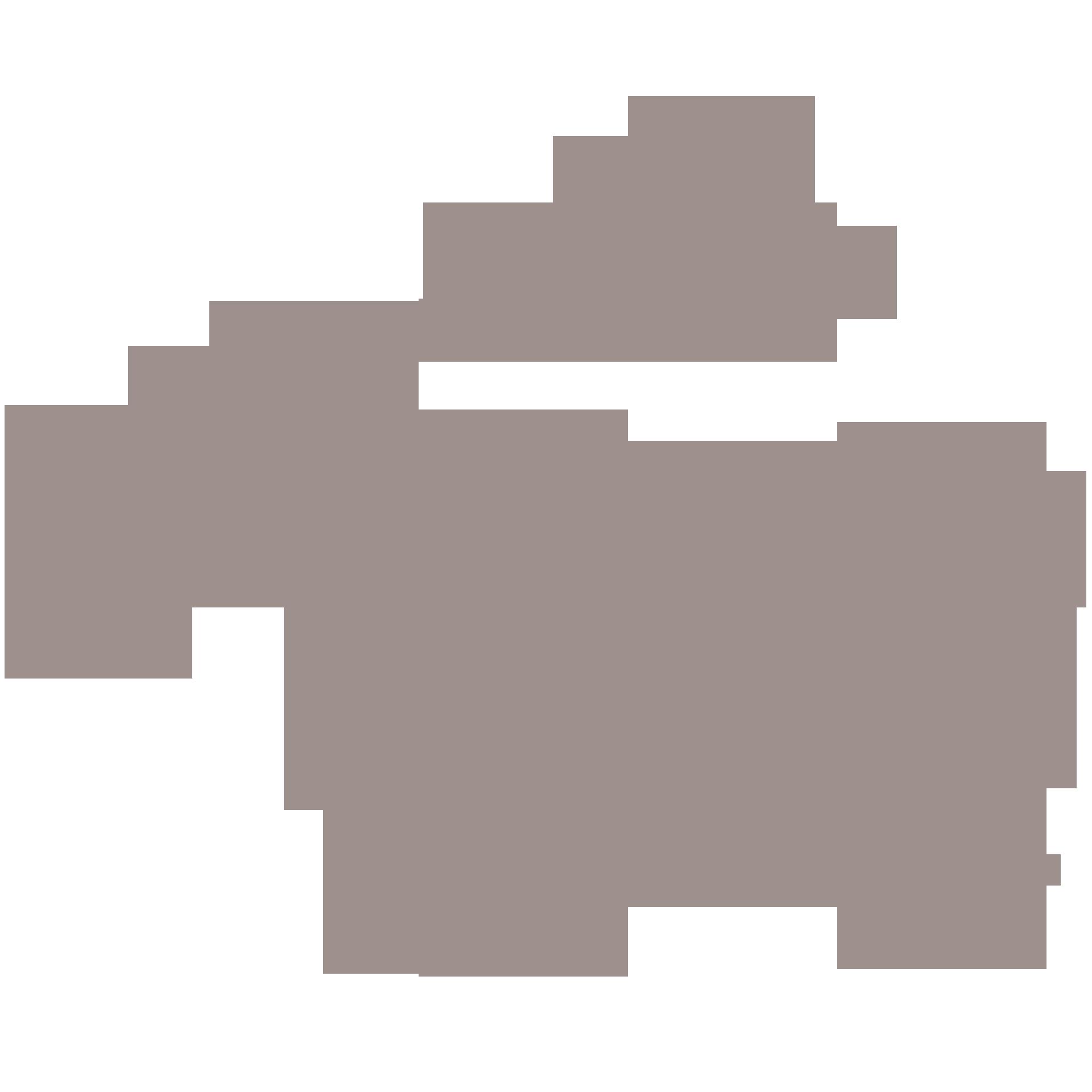 Roberta Sanzi