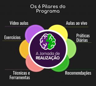 6 pilares do programa a jornada de realização
